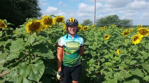 Bicycle Missouri jersey in a field of Kansas sunflowers
